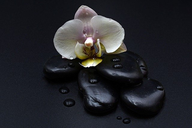 Shungite and EMF Protection